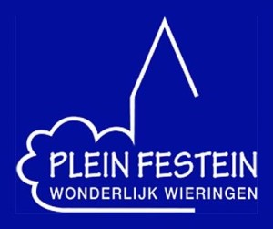 logo PleinFestein